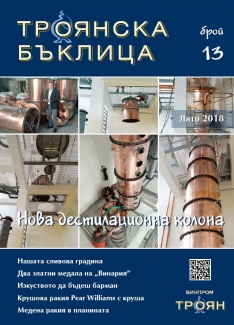 Troyanska Baklitsa - issue 13