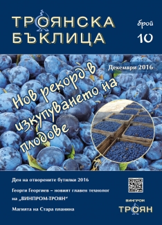 Troyanska Baklitsa - issue 10