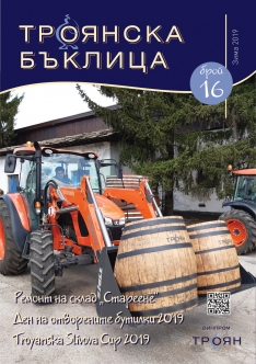 Troyanska baklitsa - issue 16